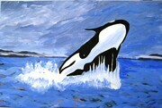 April 10, Breaching Orca